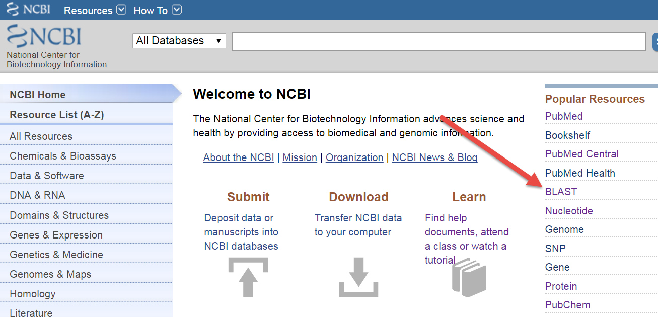 Guide on the side ncbi blast identify and compare sequences ncbi home page stopboris Image collections